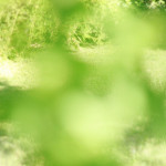 Abstract Spring Green