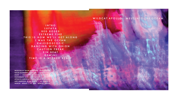Album art designed in Photoshop for Wildcat Apollo's second album. See the 3-D proof here.